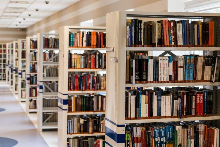 Indonesia Jawara Perpustakaan Tapi Miskin Literasi?